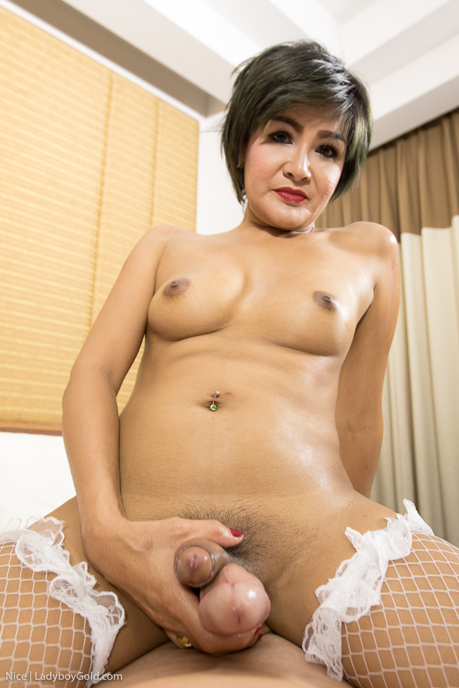 Mature Asian Tranny