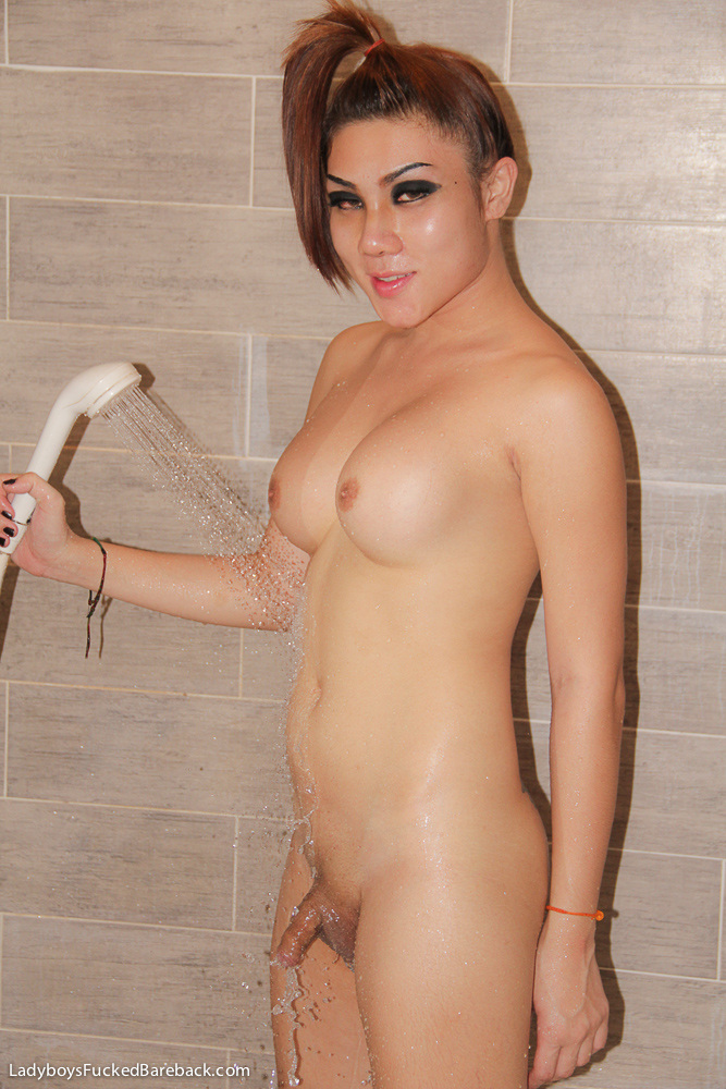 ladyboy massage Asian shemale