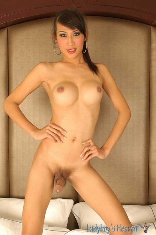 Nude thailand lady boy photo pics 36